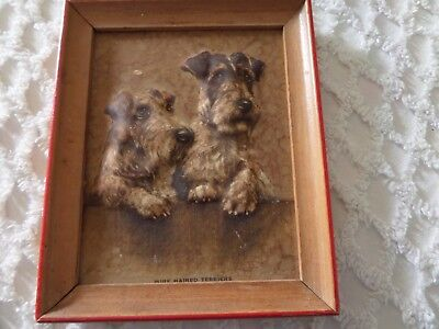 """Vtg Wire Haired Terriers  Dog Embossed Framed Print  4 1/2 x 5 1/2"""" M. Gear"""