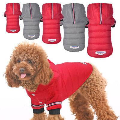 Small Dog Winter Coat Jacket For Chihuahua Hoodie Clothes Pet Puppy Cat Apparel