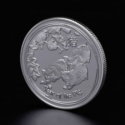 2019 Pig Piggy Year Lucky Chinese Anniversary Commemorative Coin Souvenir Silver
