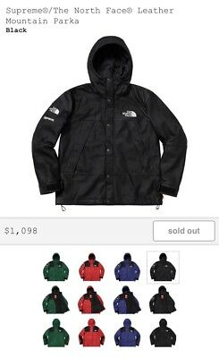 19894b66a SUPREME/THE NORTH FACE TNF Leather Red Mountain Parka FW18 Size ...
