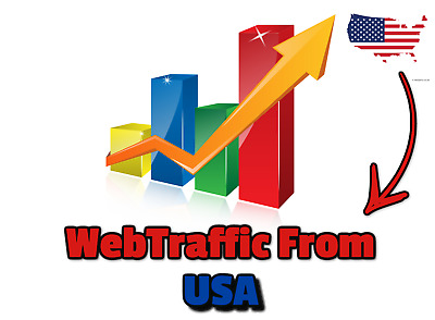 Web traffic  From USA ,1.000 Unique REAL Hits to You Website  From USA