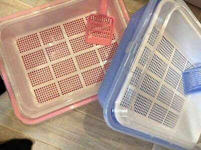 Clever Sieve Litter Tray For Wood Pellets Cat/Kitten Tray .....PINK & BLUE