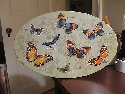 vintage old metal butterfly tin box oval butterfly moth graphics large