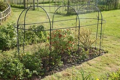 Haxnicks Steel Long Fruit Cage
