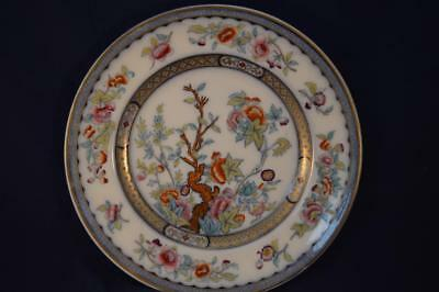 Antique Ridgway Dinner Plate Indian Tree Vesper 19Th Century - 2/2872