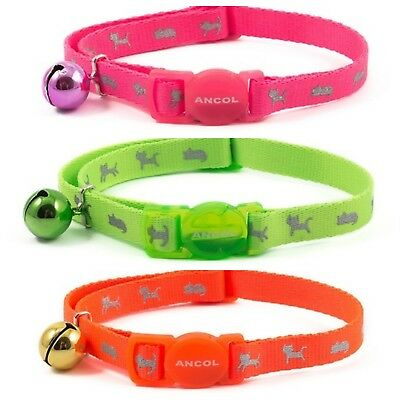 ANCOL 'NEW RANGE' Hi Viz ADULT Cat Collar ( With or Without Engraved ID Tag )