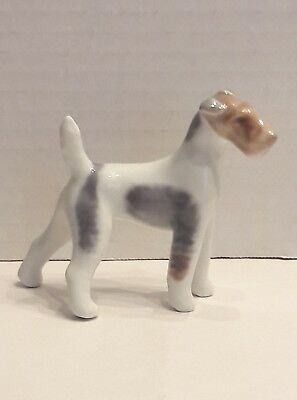 Royal Copenhagen Wire-haired Fox Terrier Dog #3170 Denmark