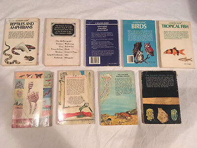 Lot GOLDEN GUIDE Science NATURE Reptiles ZOOLOGY Batss ANTIQUES lot of 9 Rocks