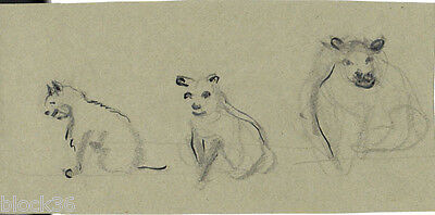 LIONS page with drawings from the album of Russian artist A.M.Gromov