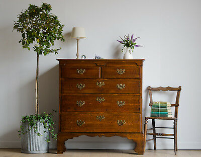 Rare Antique George III Oak Cottage Straight-Front Chest of Drawers