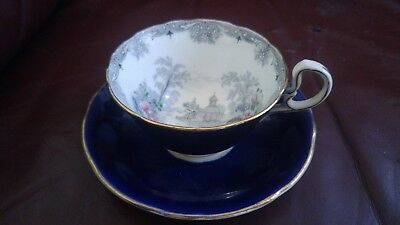 Rare Exquisite Signed Hand painted Blue & Garden Aynsley Tea Cup and Saucer