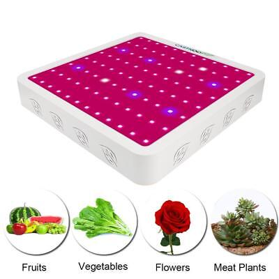 CASTNOO 400W LED Grow Light Full Spectrum Indoor Hydro Veg Flower Grow Panel ZH