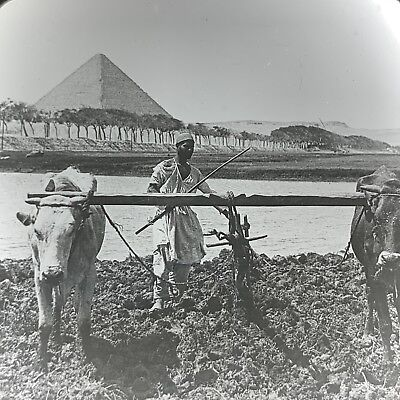 Magic Lantern Glass Slide Photo Keystone Egyptian Pyramid Farmer River