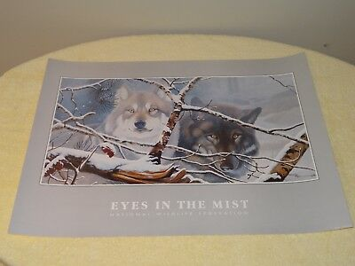 Eyes In The Mist Poster By Daniel Pierce-Issued By National Wildlife Federation