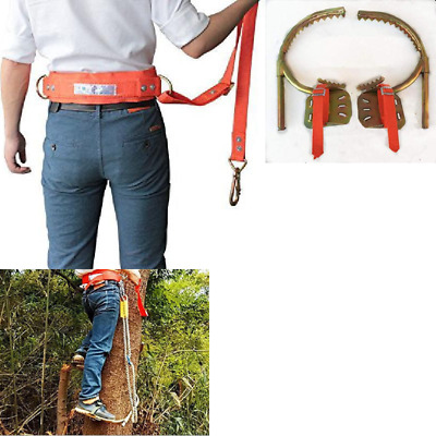 Pair of Climbers Professional Tree Climbing Spikes Together with Safe Belt