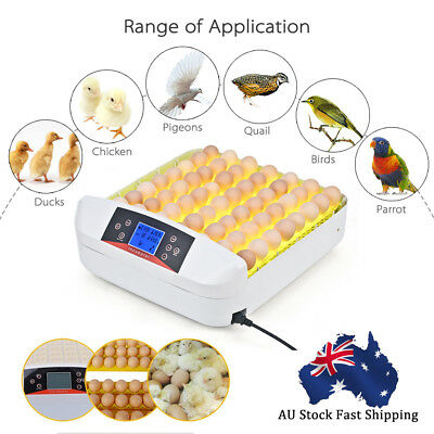 On Sale:56 Egg Incubator Digital LED Fully Automatic Turning Chicken Duck Eggs