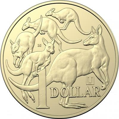 "2019 $1.00 ""U"" 35 Mint Mark Mob of Roos Competition coin. UNC From Mint Bag. MOR"