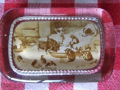 Antique Glass PYRO Photo Co Paperweight PUPPIES KITTENS ADORABLE Vintage NICE