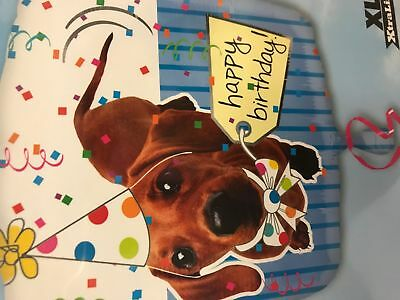 Dachshund Dog With Party Hat Happy Birthday Ballon