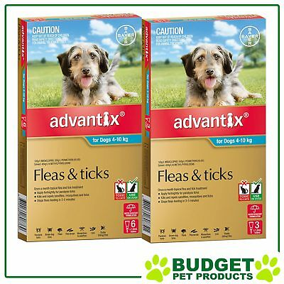Advantix For Dogs Medium 4-10kg 9 Pack