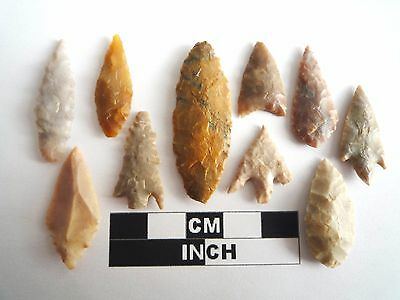 Neolithic Arrowheads x 10, High Quality Selection of Styles - 4000BC - (1081)