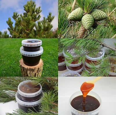 Sirup Sweet Pine Cone Syrup fur Gesundheit 200 and 600 gr neto