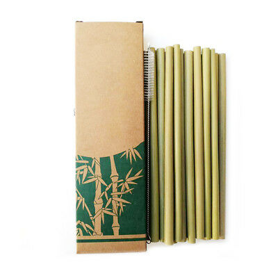 10Pcs Natural Organic Bamboo Drinking Straws 20CM Reusable Eco + Straw cleaner