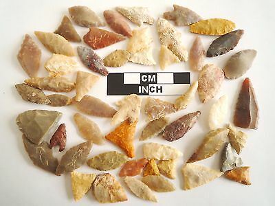 Neolithic Arrowheads x 50, Selection of Styles and Sizes - 4000BC - (0483)