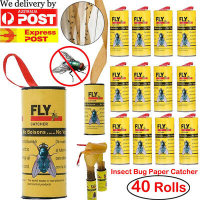 40 Rolls Sticky Fly Trap Paper Yellow Traps Fruit Flies Insect Bug Glue Catcher