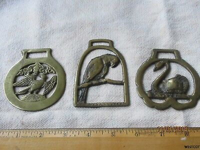 Parrot, Swan and Eagle brass horse medallions: Antique and rare: good condition
