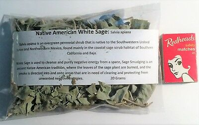 White Sage, Genuine Native American, 20 Grams Loose Leaf, healing, smudging.