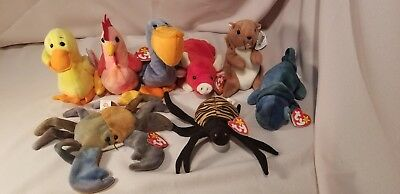 Lot of 8 Ty Beanie Babies with Tags, Claude, Spinner, Rainbow, Nuts, Quackers +
