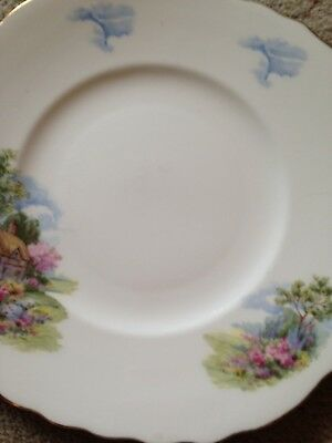Royal Vale 'Cottage Garden' Eared Sandwich Plate