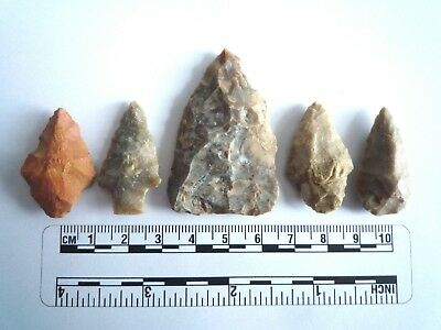 5 x Native American Arrowheads found in Texas, dating from approx 1000BC  (2217)