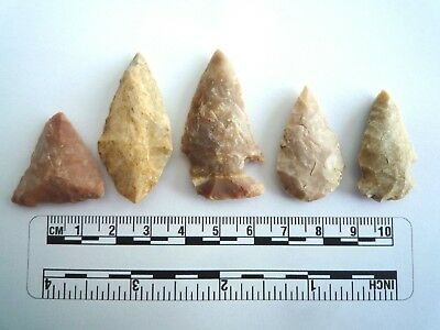5 x Native American Arrowheads found in Texas, dating from approx 1000BC  (2210)