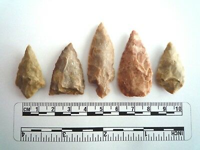 5 x Native American Arrowheads found in Texas, dating from approx 1000BC  (2233)