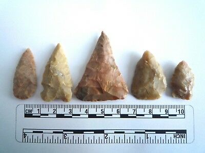 5 x Native American Arrowheads found in Texas, dating from approx 1000BC  (2204)