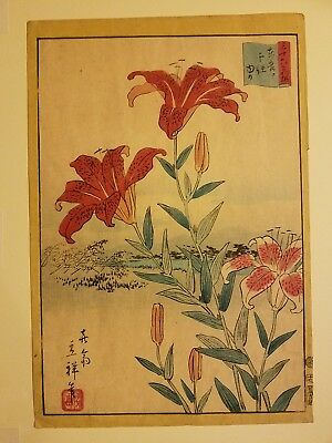 Vintage Antique Asian Japanese Woodblock lithograph Tiger Lily Lillies Print