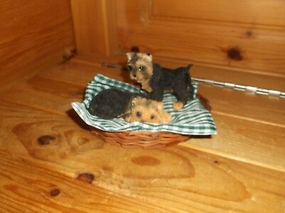 2 Yorkie / Yorkshire Terrier Puppies / Dogs In Wicker Bed