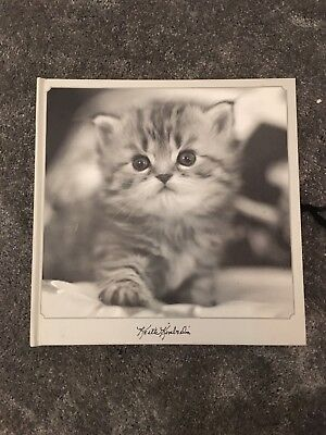 Photo Album With Pictures Of Cats