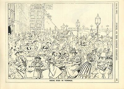 """""""rarae Aves In Terrace"""" House Of Commons  ~ Antique Punch Cartoon From 1893"""