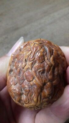 Antique Carved Walnut Shell