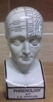 Phrenology Modellkopf by L.N.Fowler Authentic Models 29cm braun alt