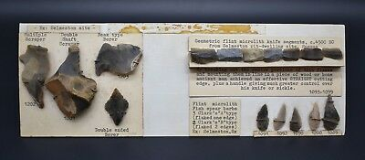 Rare British Neolithic display with finds from archaeological site in Selmeston