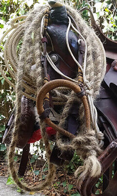 Traditional Hackamore Reinsman Braid dressed headstall, bosal and mecate
