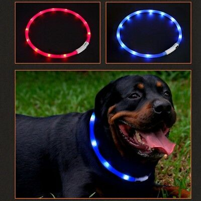 RECHARGEABLE LED Light-up Flash GLOW COLLAR Dog Pet Safety USB Adjustable Collar