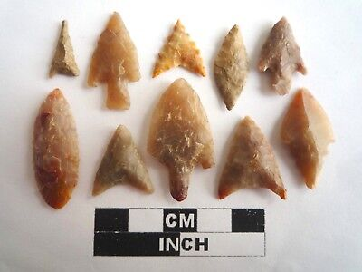 Neolithic Arrowheads x 10, High Quality Selection of Styles - 4000BC - (2134)