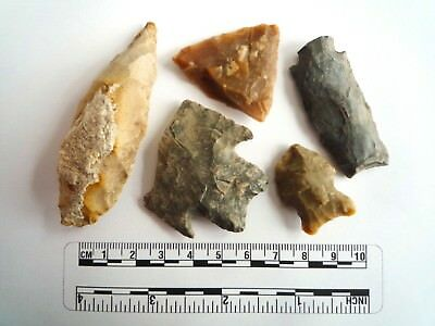 Native American Arrowheads found in Texas x 5, dating from approx 1000BC  (2287)