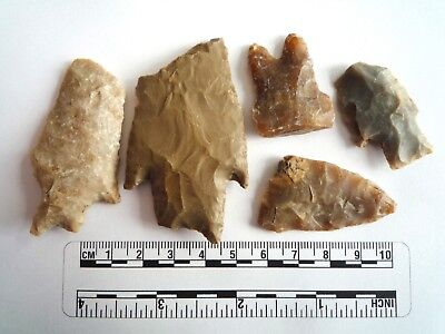 Native American Arrowheads found in Texas x 5, dating from approx 1000BC  (2262)