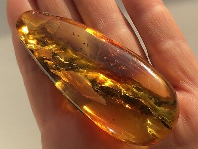 Natural Antique Baltic Vintage Amber OLD BUTTERSCOTCH EGG YOLK Stone cabochon